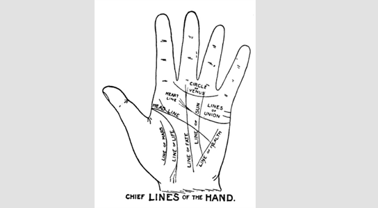 a drawing of a hand labelled Chief Lines of the Hand