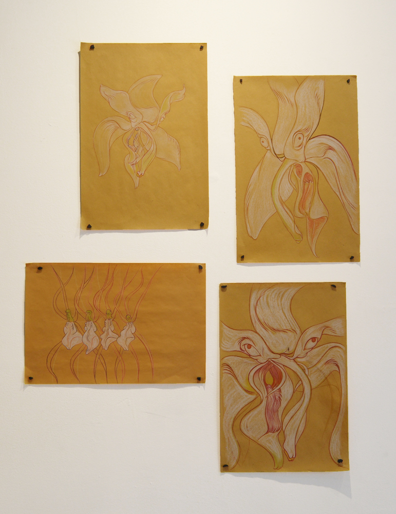 Installation shot of four drawings depicting a flower